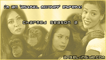 I'm an 'Astral Monkey' expert!